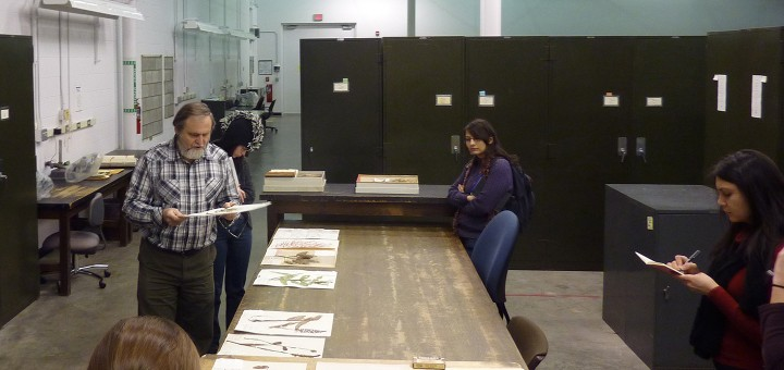 MSP10 grad students during site visit to the U-M Herbarium.